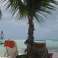 Enjoying the Tropical Fruits, Cayman Islands Recap Part I