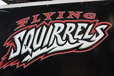 flying squirrels.JPG
