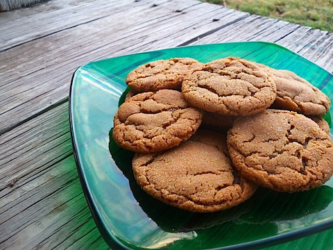 molasses spice cookies.jpg