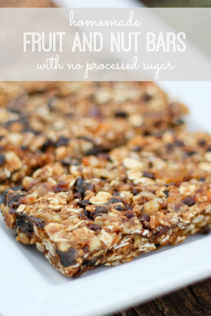 Simple Fruit and Nut Bars