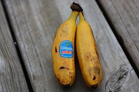 mini bananas.JPG