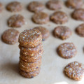 Mini-No-Bake-Almond-Cookies