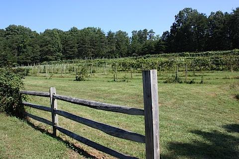 Grayhaven Winery.JPG