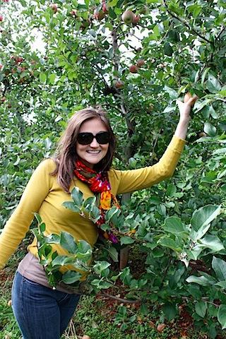 apple-picking.jpg