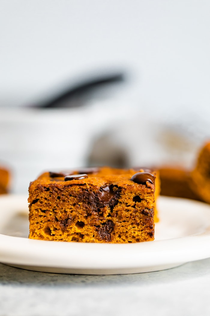 Pumpkin bar with chocolate chips on a plate.