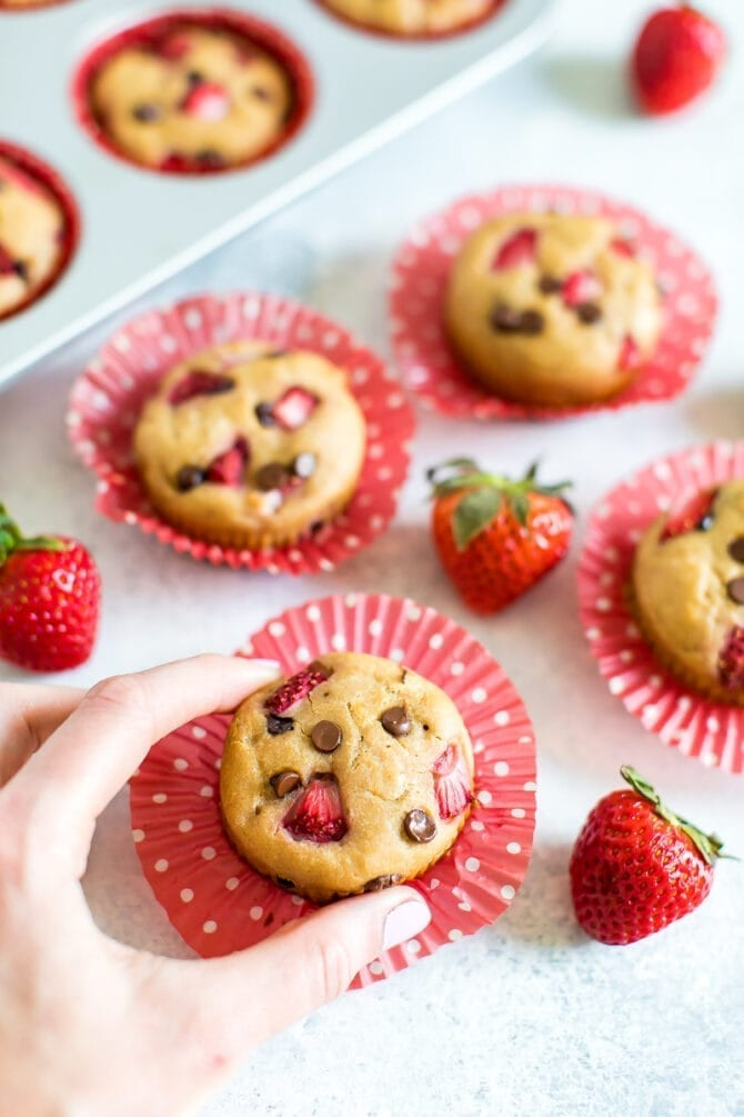 Hand picking up a strawberry protein muffin with chocolate chips. More muffins and strawberries are in the background along with a muffin tin. Muffins are topped with strawberries and chocolate chips.