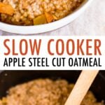 Photo of a bowl full of apple cinnamon steel cut oatmeal. Slow cooker with steel cut oatmeal and a spoon.