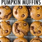 9 chocolate chip pumpkin muffins on a cooling rack.