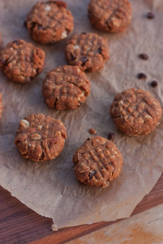 Flourless Peanut Butter Protein Cookies - Eating Bird Food