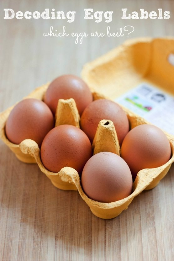 Decoding Egg Labels -- Which Eggs Are Best?
