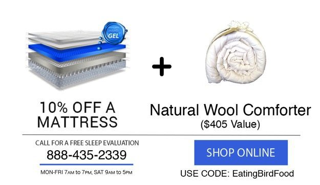 intellibed promo with free organic wool comforter