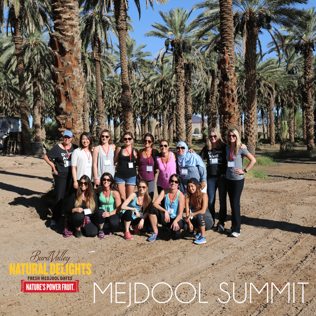 Group photo of bloggers at mejdool summit.