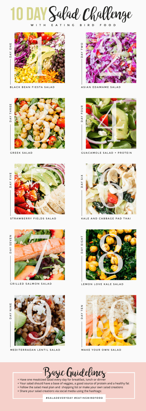 10 Day Salad Challenge! Eat a meal-sized salad every day for 10 days! // eatingbirdfood.com