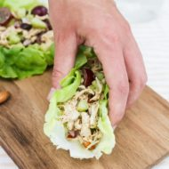 Almond Butter Chicken Salad + Healthy Shredded Chicken Recipes