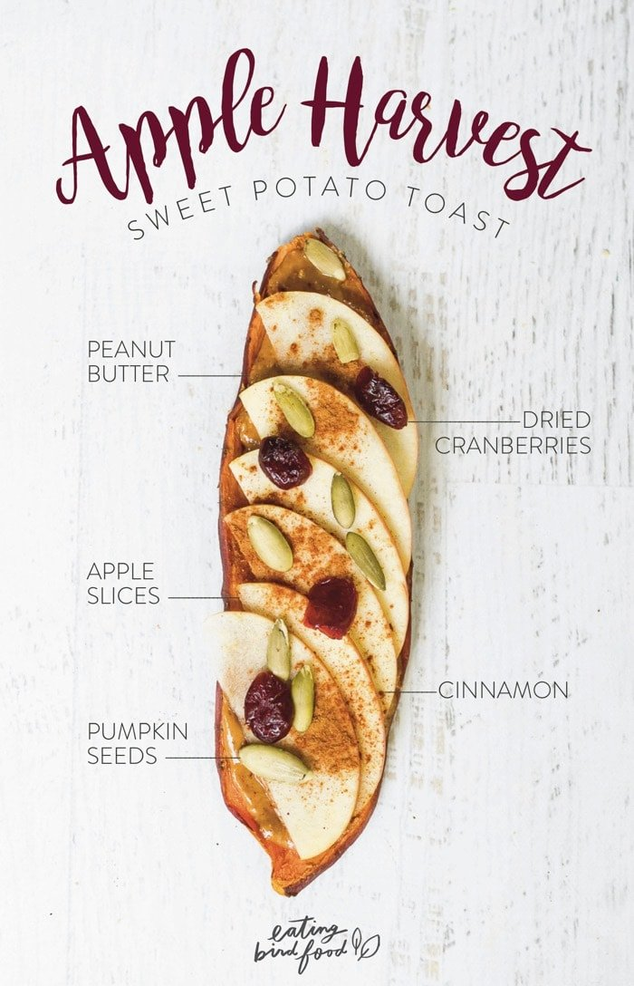 Apple Harvest Sweet Potato Toast with peanut butter, thin apple slices, pumpkin seeds, cranberries and cinnamon
