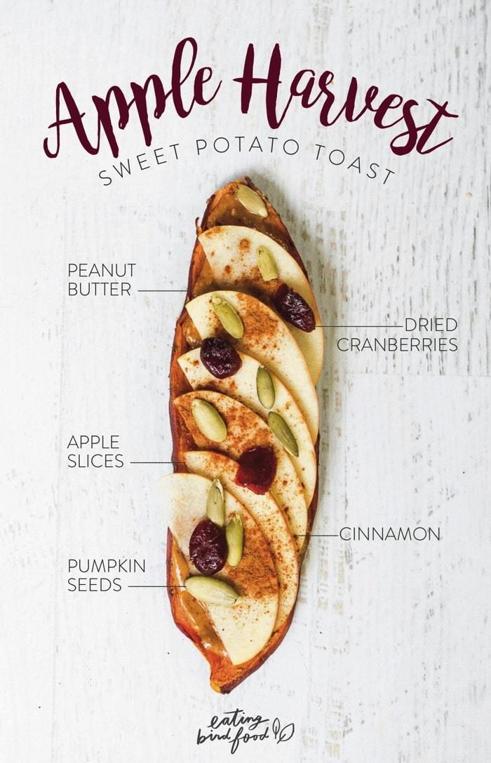 Apple Harvest Sweet Potato Toast with peanut butter, thin apple slices, pumpkin seeds, cranberries and cinnamon