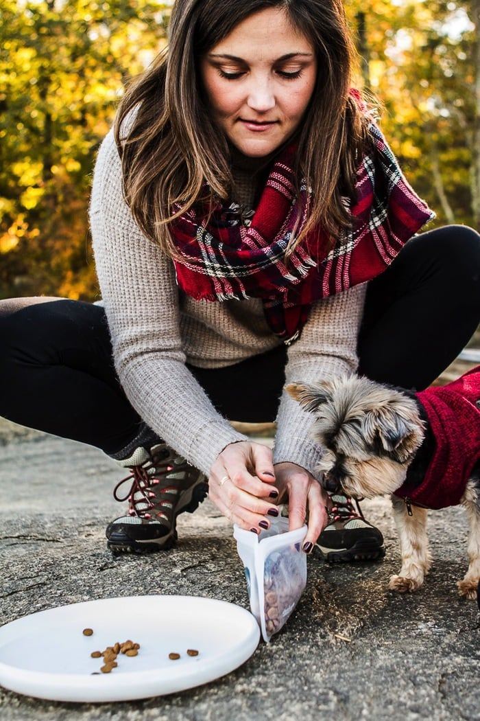 Snacks are a must when hiking with a small dog!