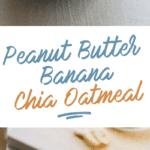 Peanut Butter Chia Oatmeal Long Pin
