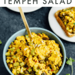 Bowl of curried tempeh salad with a curry dressing, tempeh, raisins, and veggies.