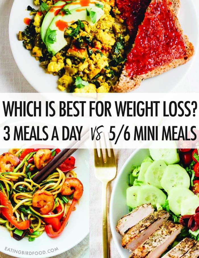 Which is better for Weight Loss -- 3 meals a day vs 5-6 mini meals?