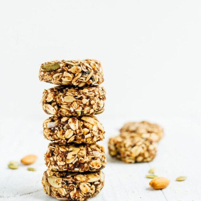 Bird Food Granola Bites