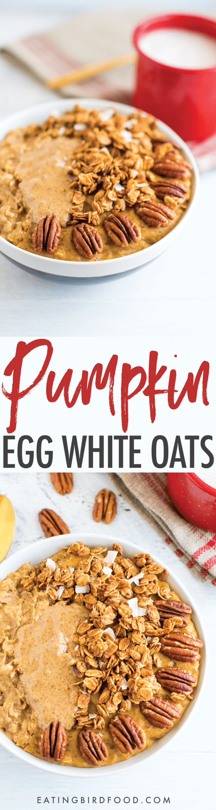 This protein pumpkin oatmeal recipe is loaded with pumpkin flavor and protein. The secret is whipping egg whites into the oats while they cook!