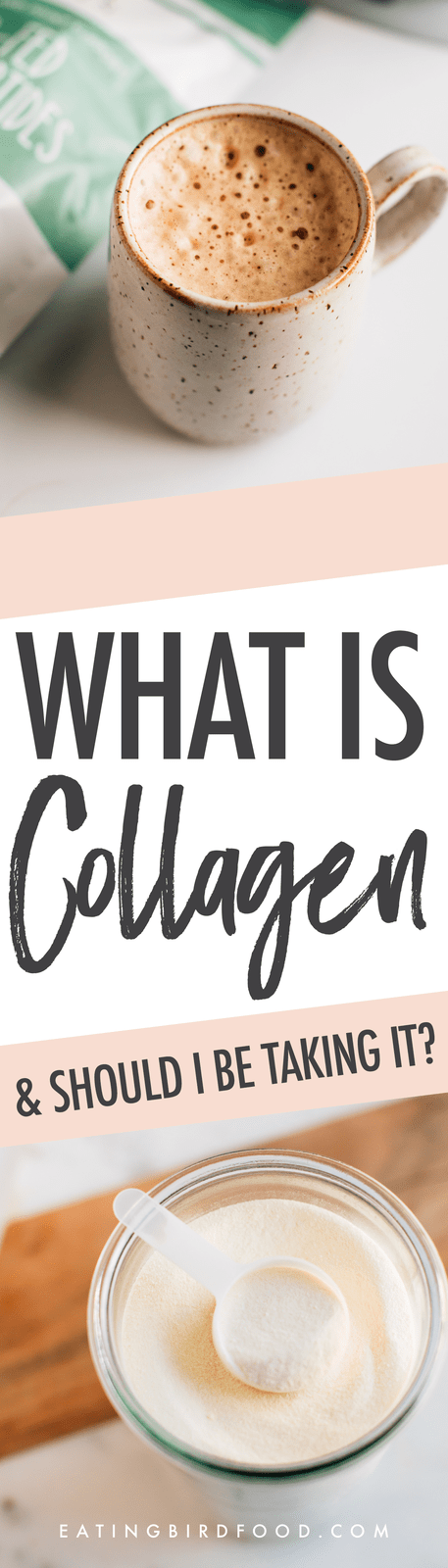 Want to learn more about collagen and why it's so popular among health enthusiasts? We're breaking it down for you today by answering the following questions: What is collagen, what does collagen do and should you be taking it...