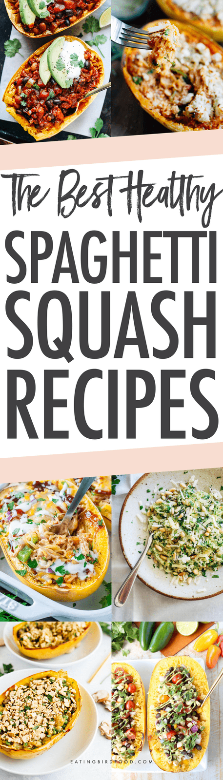 Get creative this winter with 22 healthy spaghetti squash recipes. Spaghetti squash is a delicious, low-carb seasonal vegetable that can be used a variety of ways -- even for breakfast or dessert!