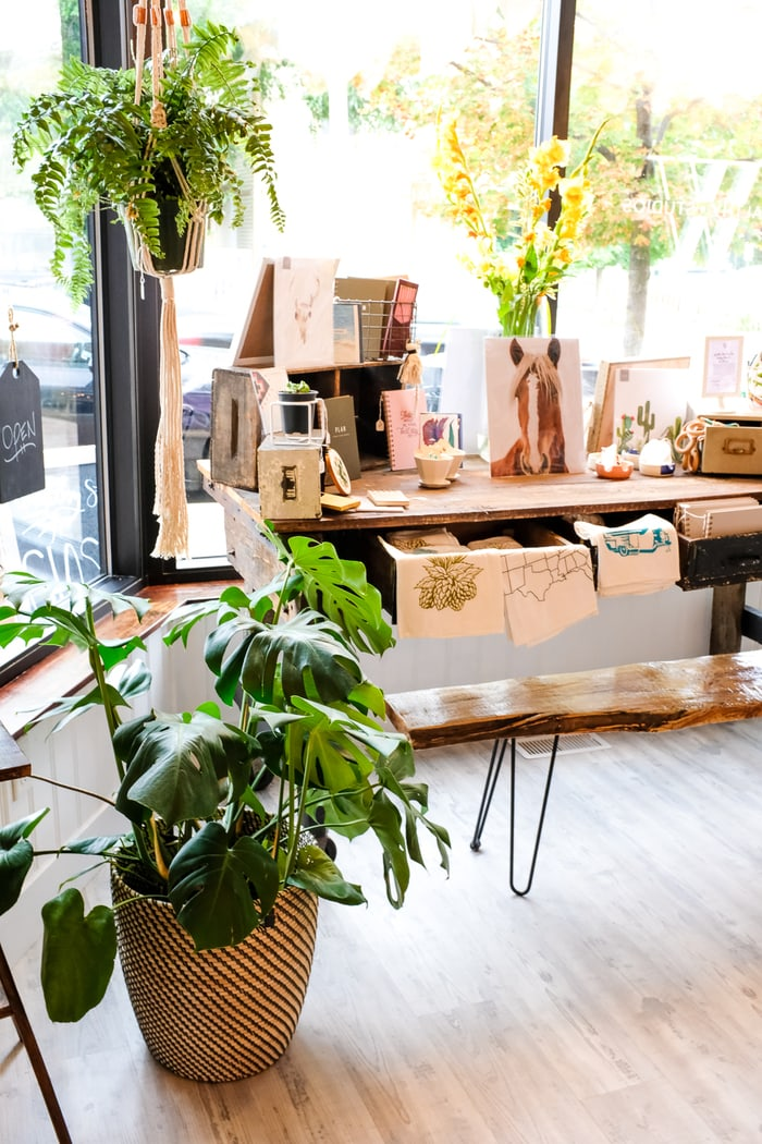 Cute shop with housework items and indoor plants decorating the shop.