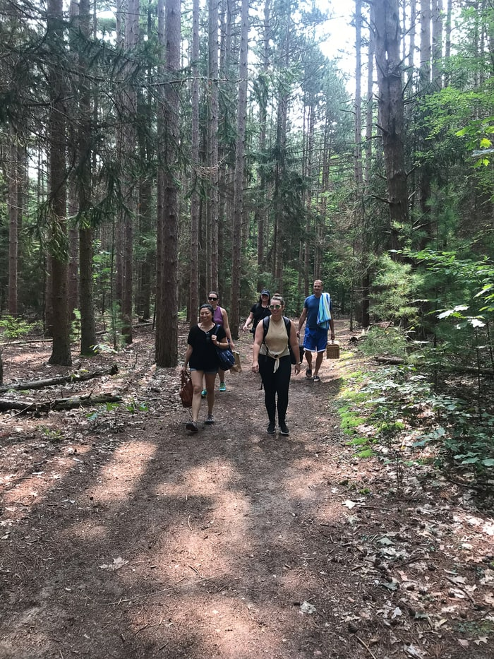 A group of women hiking on a woodland trail.