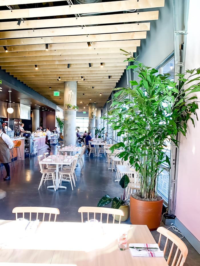 Interior of an Israeli restaurant in Denver. Tables and chairs are simple, and there are indoor plants and wood slat decorative ceiling.