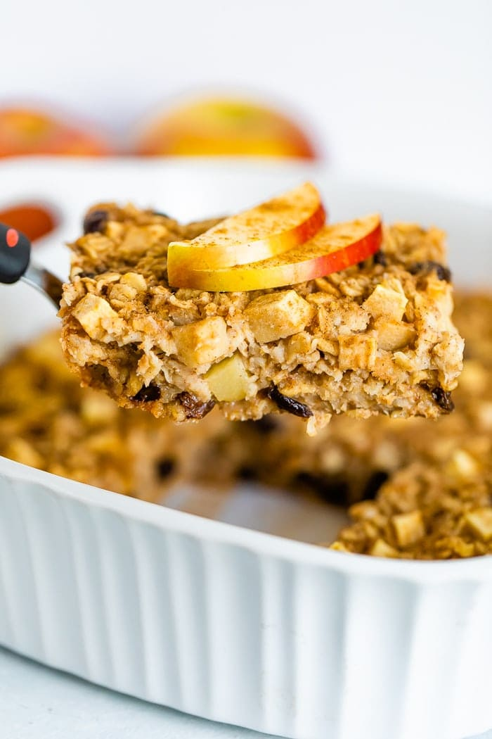 Apple Cinnamon Baked Oatmeal Eating Bird Food