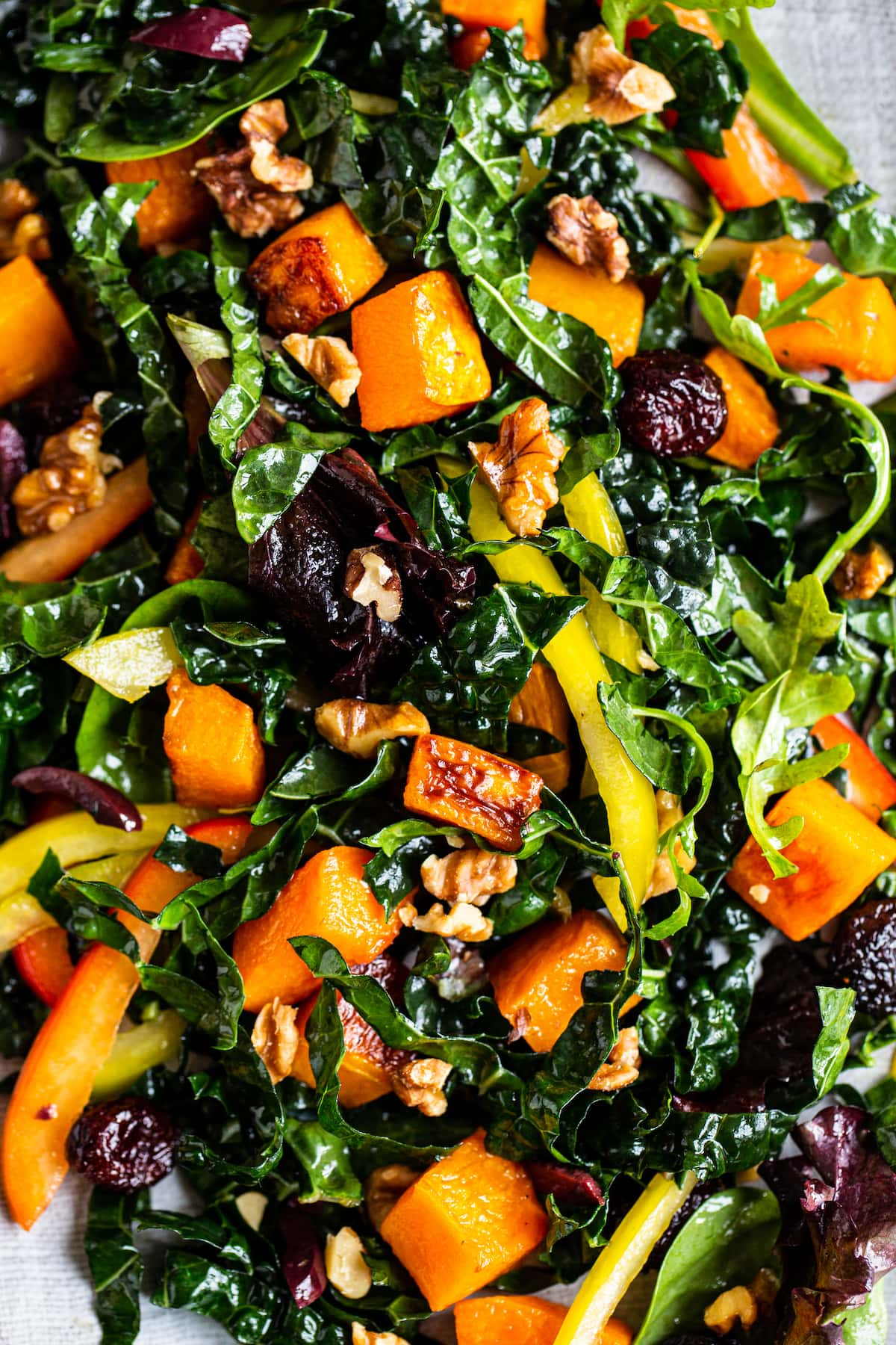 Close up photo of salad with kale, butternut squash, pepper, cranberries and walnuts.