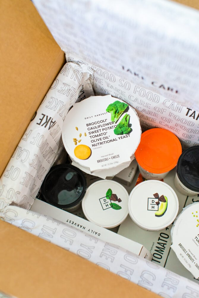Daily Harvest packages in the box that arrive in.