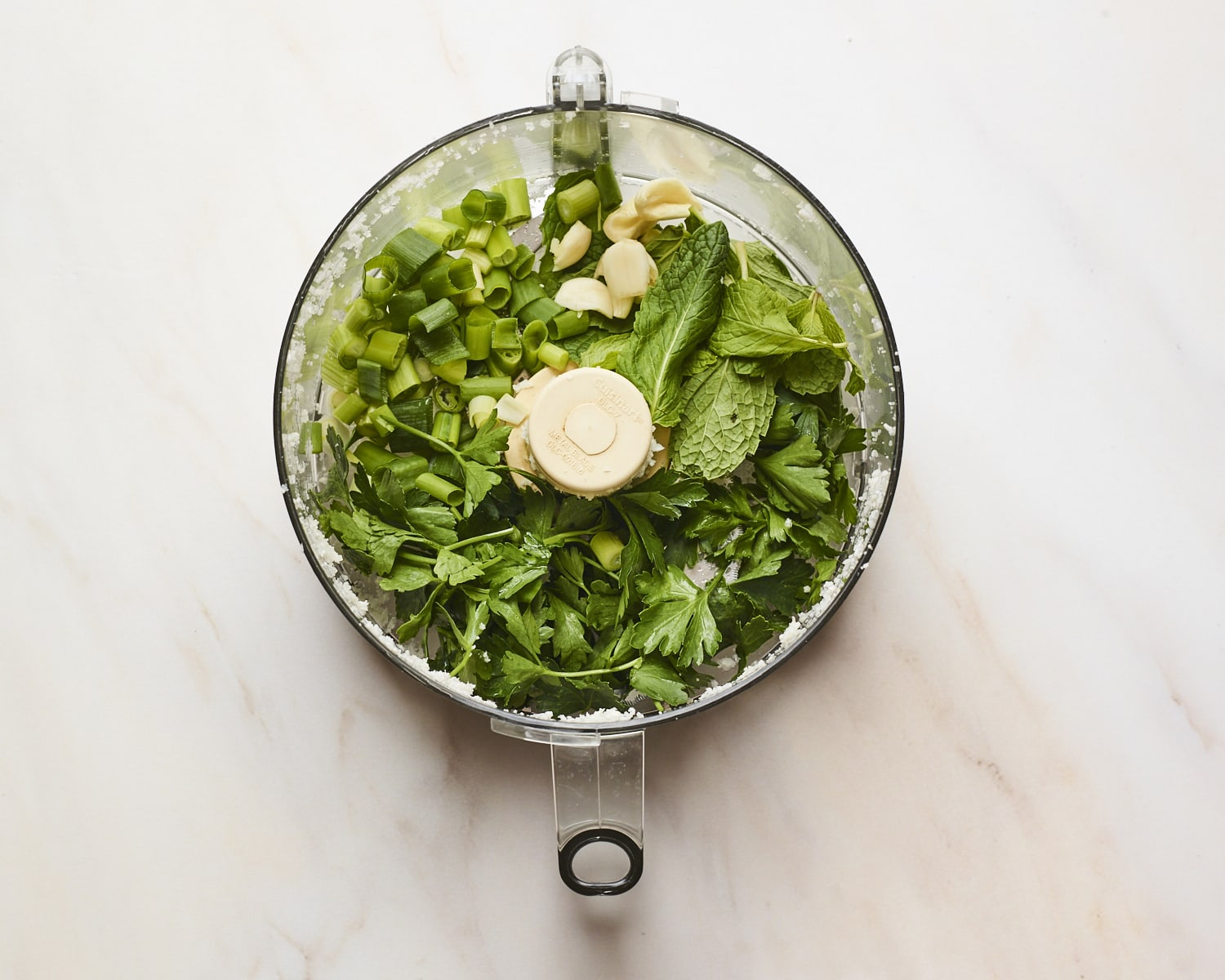 Herbs, green onion and garlic in a food processor.
