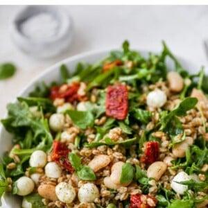 Farro arugula salad in a bowl.