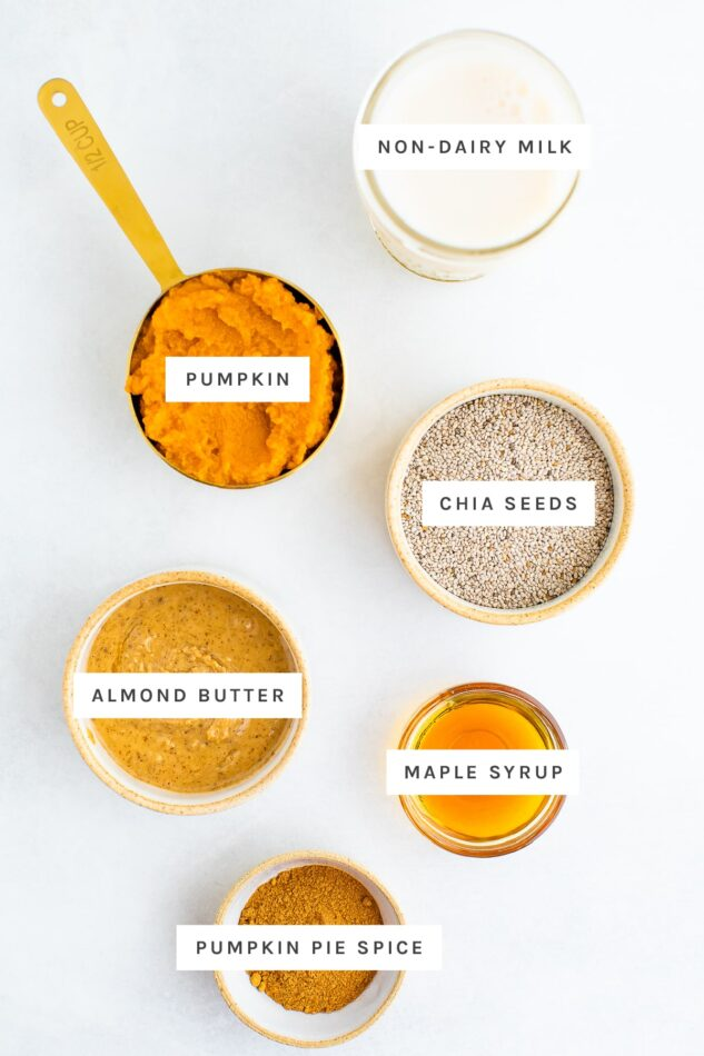 Ingredients measured out to make pumpkin chia pudding: non diary milk, pumpkin, chia seeds, almond butter, maple syrup and pumpkin pie spice.