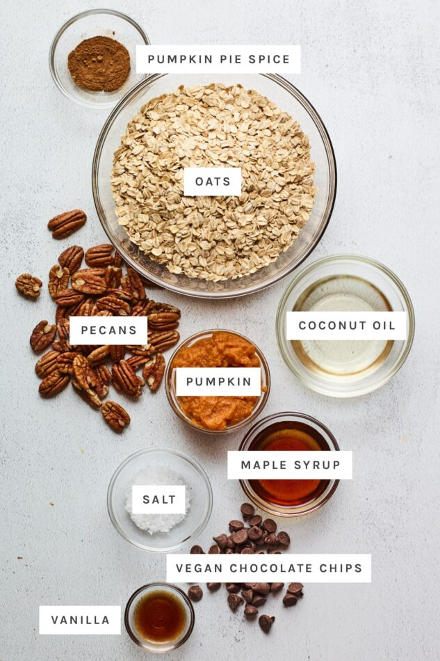 Ingredients measured out to make pumpkin granola: pumpkin pie spice, oats, pecans, coconut oil, pumpkin, maple syrup, salt, vegan chocolate chips and vanilla.