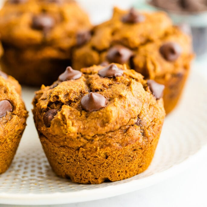 A close up of a vegan pumpkin muffin topped with chocolate chips.