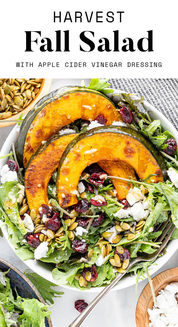 An overhead photo of a bowl of kale topped with 3 slices of roasted kabocha squash and scattered with dried cranberries, pumpkin seeds and feta. A fork rests in the bowl.