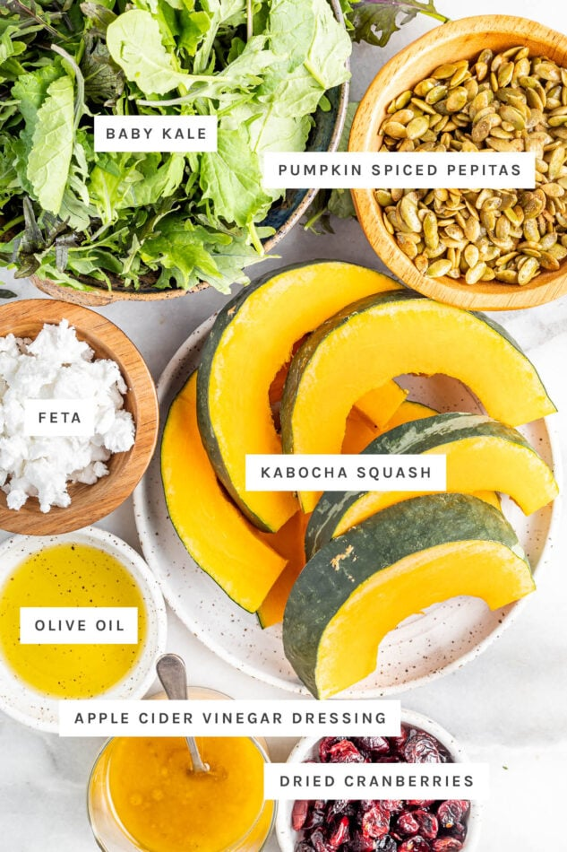 Ingredients measured out to make a harvest fall salad: baby kale, spiced pepitas, feta, kabocha squash, olive oil, apple cider dressing and dried cranberries.